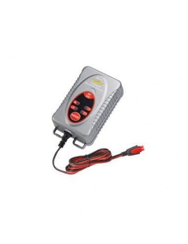 FTAA POWER CHARGER BX4 For SOLAR, Batteries.